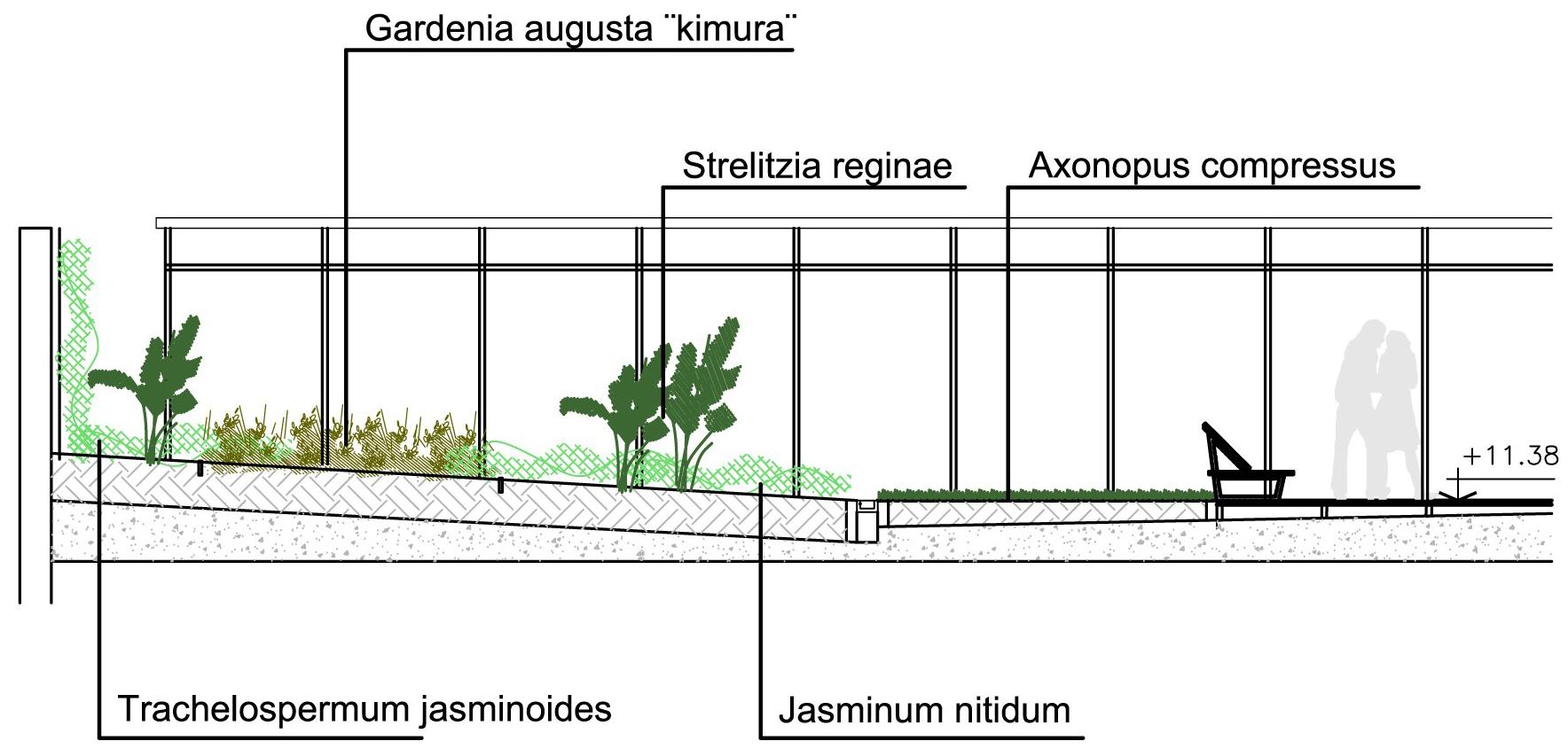 planta4detalle1