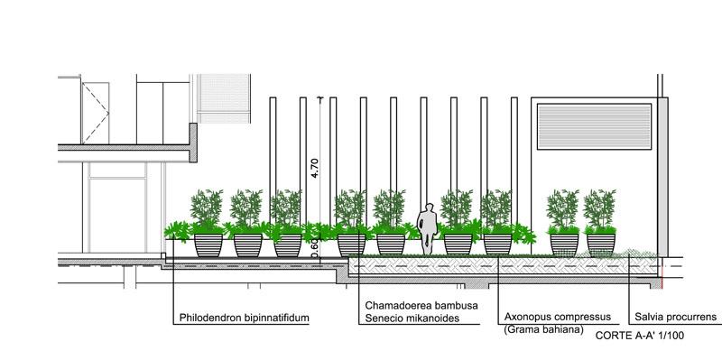 plantabajarecorte2